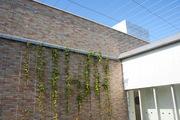 壁面緑化ワイヤーブラケットシステム 納入実績7