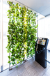 壁面緑化ワイヤーブラケットシステム 納入実績8